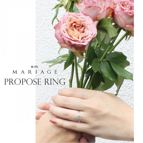 e.m.MARIAGE_proposering